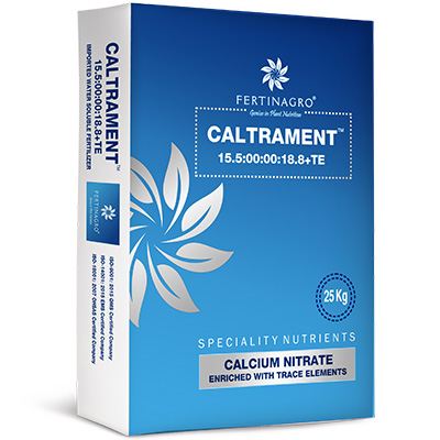 Caltrament in Pune